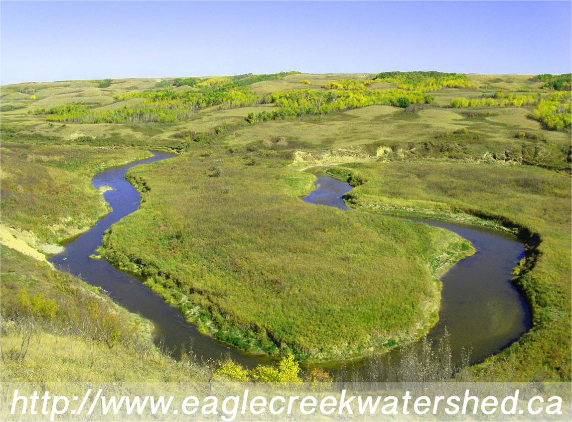 EagleCreek Watershed Group Website